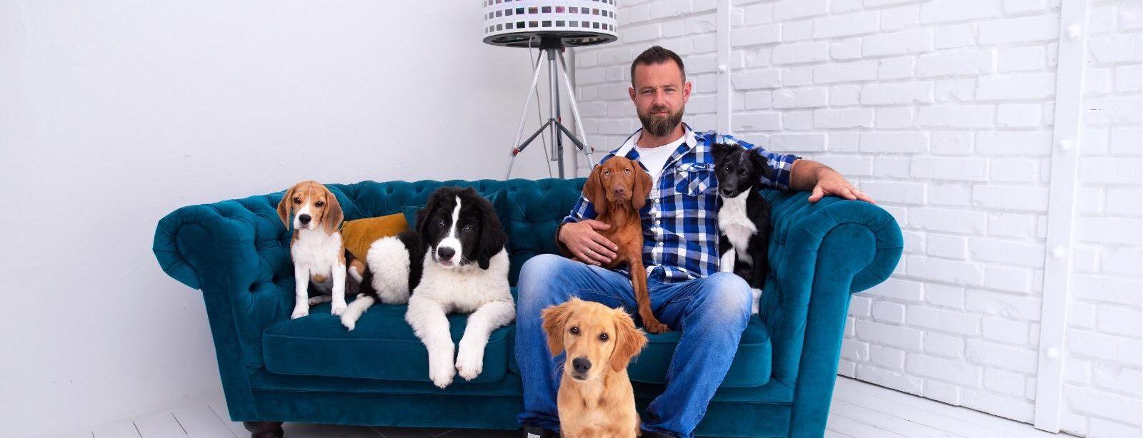 Die größten Fehler in der Hundeerziehung
