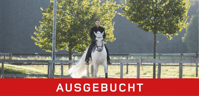 Blickschulung - pferdegerechte Ausbildung oder falsch verstandene Dressur