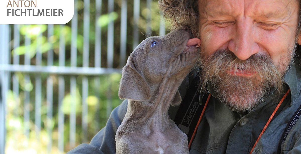 Das Kontakthalten des Hundes fördern