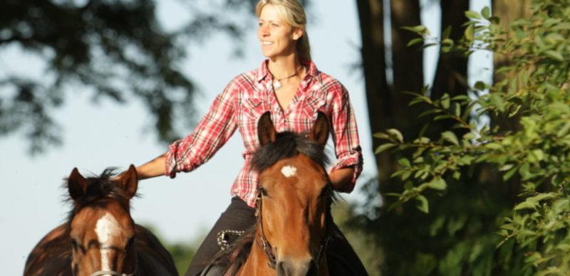 KS Ganzheitliches Pferdetraining und der Weg zu einer Partnerschaft, die alles möglich macht